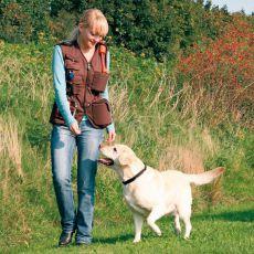 Kamizelka szkolenipwa Dog activity - brązowa, XL