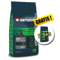Ontario Junior Large 13kg + 2,5 kg GRATIS
