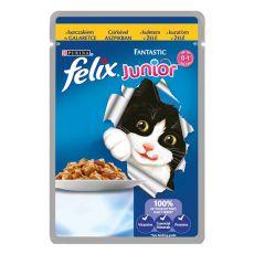 Felix Junior- mięso z kurczaka w galerecie, 100 g