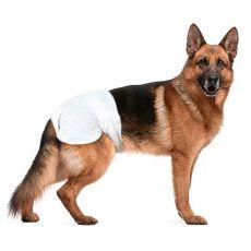 Pieluchy dla psów - 12 sztuk, wielkość XL