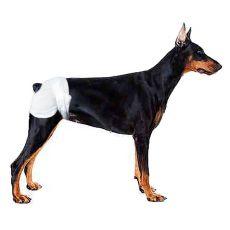 Pieluchy dla psów - 12 sztuk, wielkość M - L